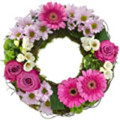 SYMPATHY WREATH - MODERN GROUPED                FROM $90.00