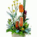 WILDFLOWER ARRANGEMENT -----  FROM $70.00