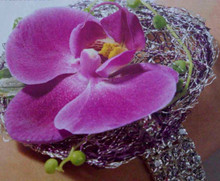 Berry Bliss Wrist Corsage Orchid focal