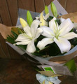 Oriental Lily Bouquet - From $50.00