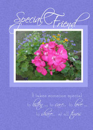 "Special Friend - 5"" x 7"" KJV Greeting Card"