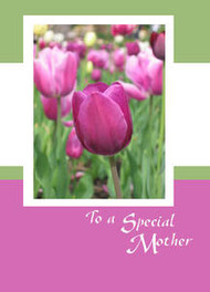 "To a Special Mother - 5"" x 7"" KJV Greeting Card"