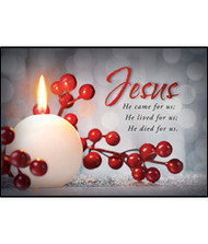 KJV Boxed Cards - Christmas, Celebrate Our Savior