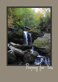 "Praying for You - 5"" x 7"" KJV Greeting Card"