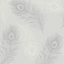 peacock grey feather wallpaper