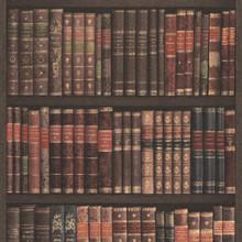 Paste the Wall Bookshelf Wallpaper on Grey Wood Panel