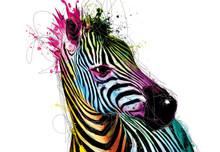 Multicoloured Large Zebra Head Wall Mural