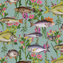 Teal Blue Fishes Wallpaper