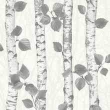 White and Silver Glitter Birch Tree Wallpaper