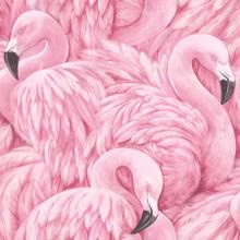 Large flamingos wallpaper