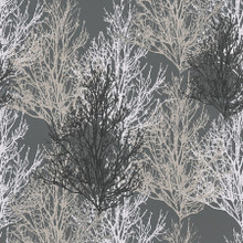 Black and Silver Trees on Dark Metallic Wallpaper