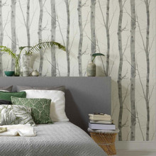 white and grey birch tree wallpaper in room
