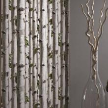 Trees - Silver Birch
