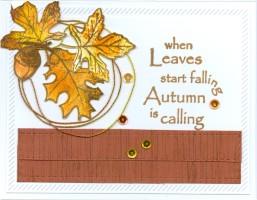 fallingleafstirngjw16.jpg