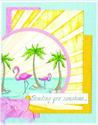 flamingosunshineburstrc16.jpg