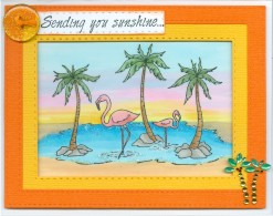 flamingosunshinerc16.jpg