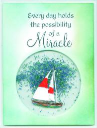 miraclesailboatshakernw16.jpg