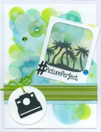 pictureperfectjw18.jpg