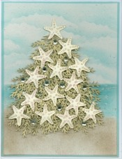 starfishtreecardnw.jpg