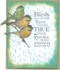 threebirdsfeatherrainnw18.jpg