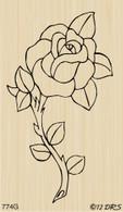 Single Rose - 774G