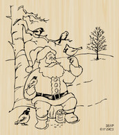 Santa with Birds Christmas Scene - 351P