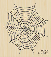 Empty Spider Web - 329G