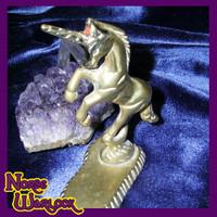 Young Unicorn Princess Twinkle Seeks First Mortal Companion!