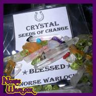 Enchanted Crystal Seeds of Change! Enjoy Success! Live Your Best Life! Metaphysical Gemstones!