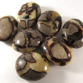ECONOMY Septarian Pebble, 1 (one) piece, Palm Stone, Medium - Madagascar STK0011