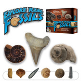 Dr. Cool Science EXPLORE REAL FOSSILS KIT -- Includes 10 Real Fossils