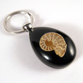 Ammonite Key Chain - Black - One (1) pc
