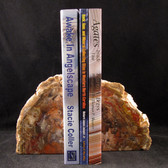 Petrified Wood Bookends - GBKND005