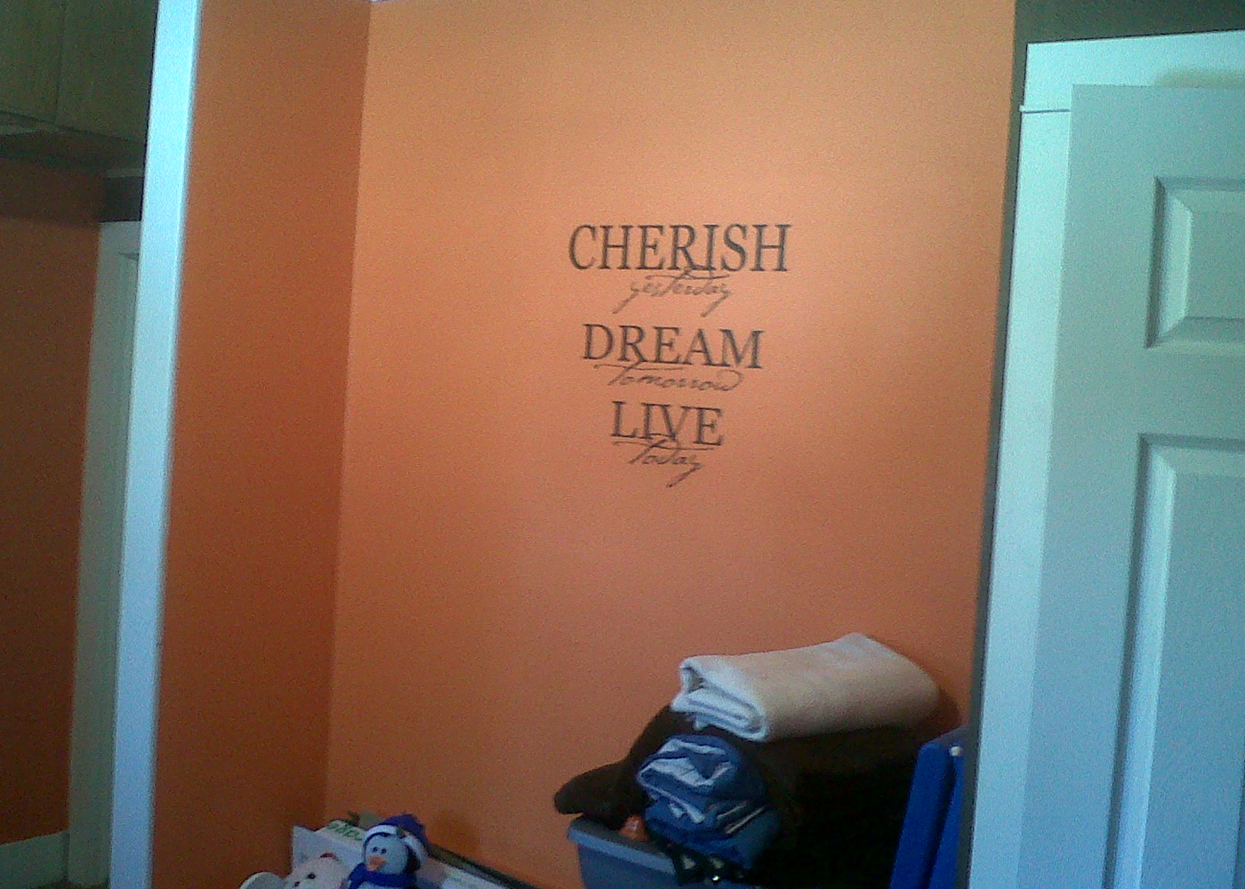 l001-cherish-vinyl-wall-decal-quote-for-home-decor.jpg
