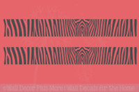 Zebra-Print Stripe Vinyl Wall Decor Stickers Decals 2pc 36x5