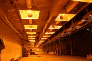 63-1000w-lights-turning-on-211-300x199.jpg