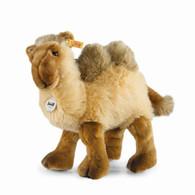 Kadir Camel EAN 104145