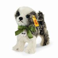 Molly Dog EAN 031434
