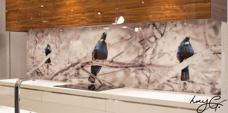 tui-glass-splashback.jpg