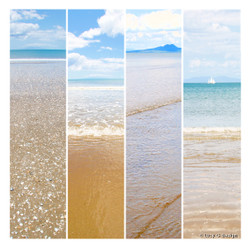 The Beach' glass wall art print for sale, featuring 4 beach scenes.