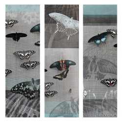Butterflies glass wall art print for sale, featuring a photo collage of butterflies.