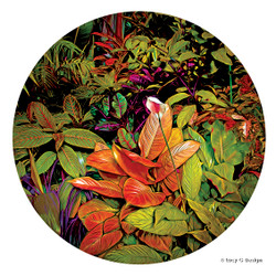 Exotic' glass wall art print for sale, featuring lush and vibrant tropical foliage and flowers.