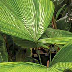 Palm paradise (glass art)