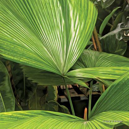 Palm frond glass wall art print for sale, featuring a beautiful lush tropical fan palm.
