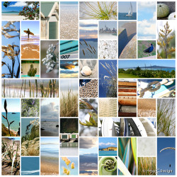 Sea, Salt, Sand' - Kiwiana NZ photo art collage print featuring beachscapes, sand, flax -art print for sale.