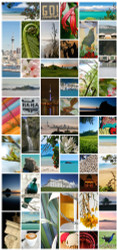 Auckland Kiwiana photo collage featuring Tui, Rangitoto, Piha, One Tree Hill, Skytower etc.
