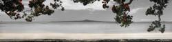 Kohi Paradise (bw, panoramic to 1.8m+)