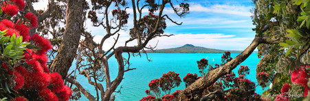 Rangitoto framed by flowering Pohutukawa, Ladies Bay, St. Heliers, Auckland, NZ - print for sale