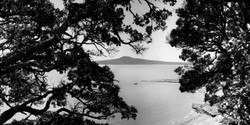 Rangitoto and Pohutukawa, St. Heliers, Auckland, NZ - photography landscape print for sale.