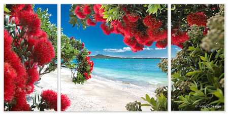 Glendowie Auckland, NZ - Pohutukawa and Rangitoto landscape photography print for sale